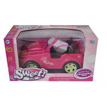 Dolls Beach Jeep