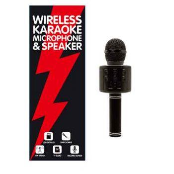 Karaoke Microphone & Speaker