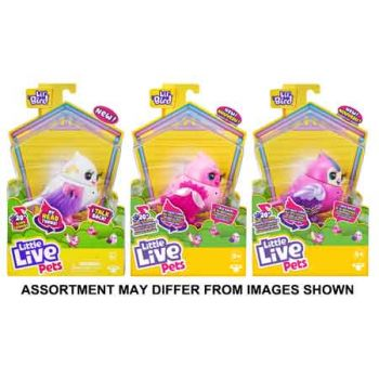Little Live Pets Series 10 Bird Single Pack assorted